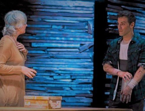"Reseña de ""Tom en la granja"" de Bouchard. Teatro Fernán Gómez. Madrid. 10/XII/18"