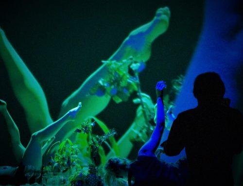 "Reseña de ""Deep Dish. The Perfect Garden"" de Liquid Loft. Naves Matadero. Madrid 9/02/19"